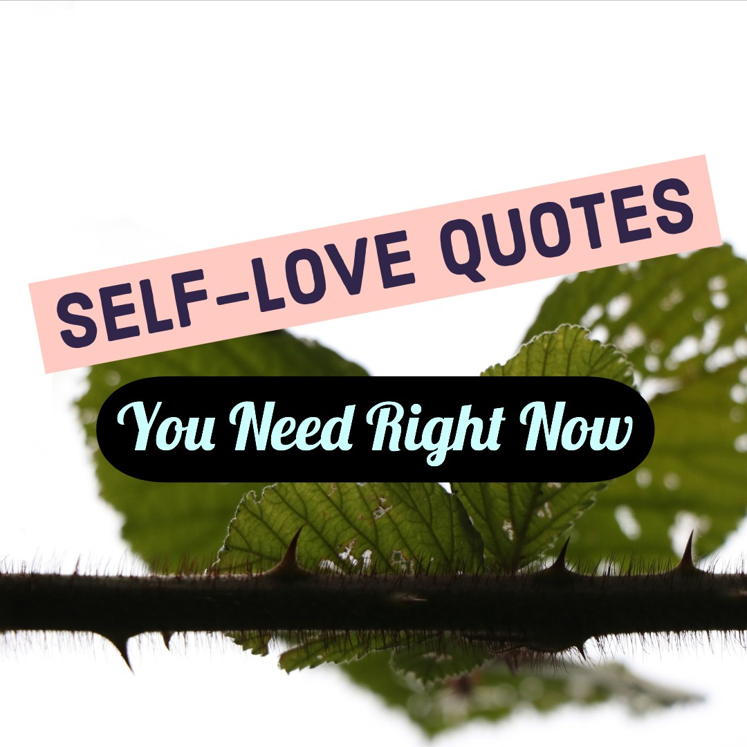 Self-Love Quotes You Need Right Now